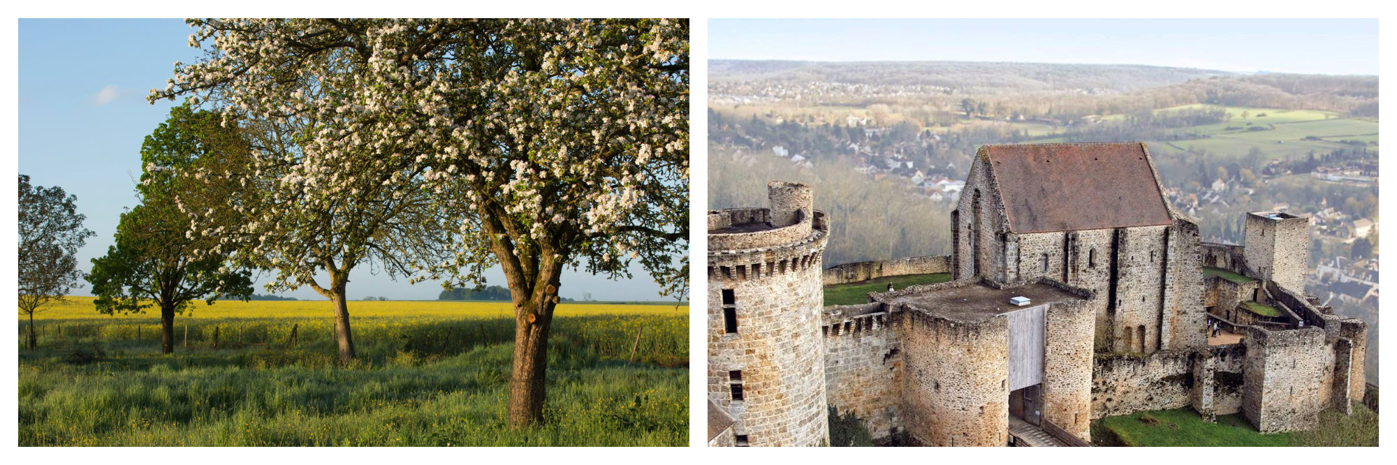 Beautiful fields with trees in the Haute Vallée de Chevreuse (left) and its ruined castle (right).