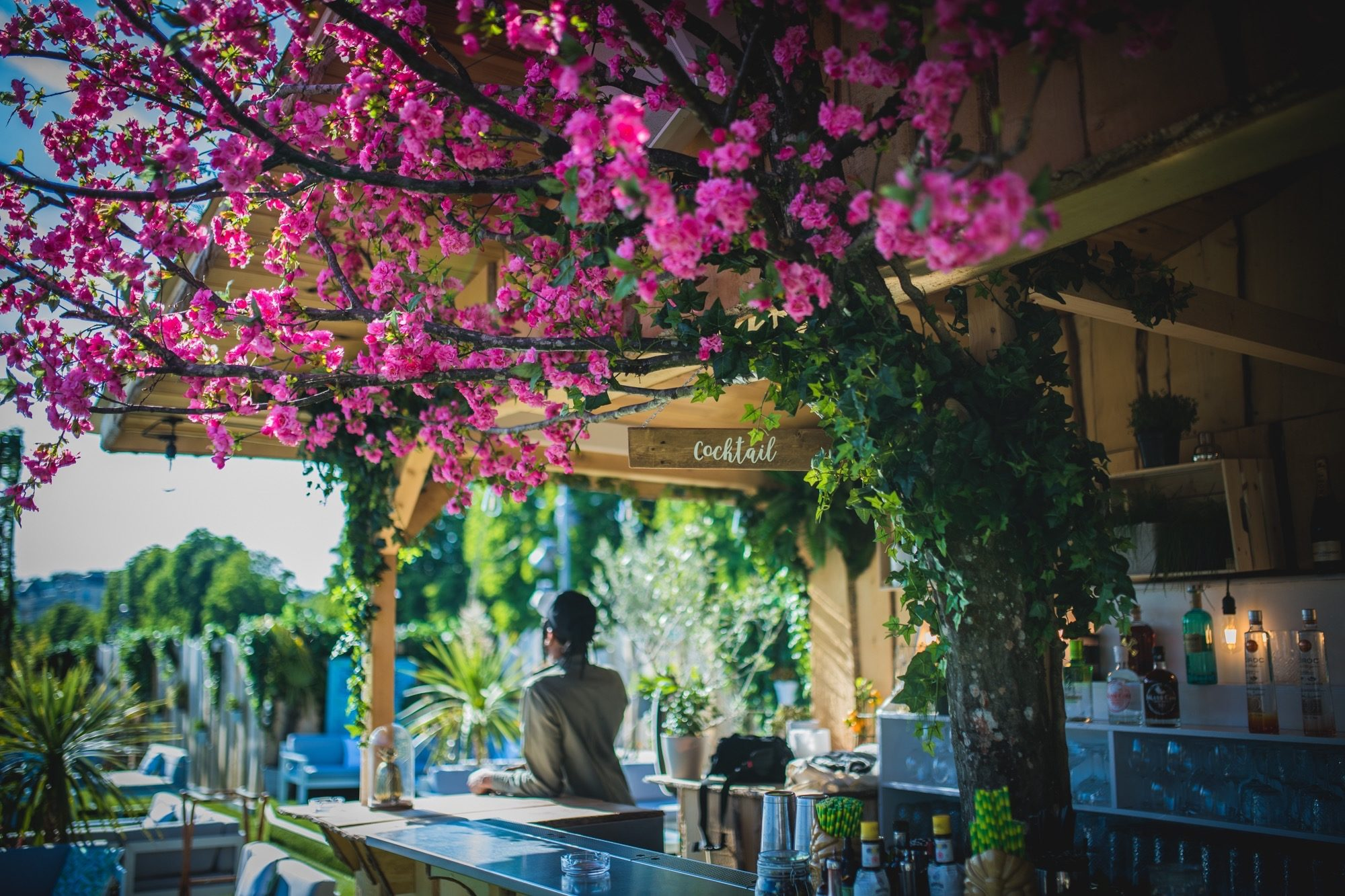 The fabulous pink flowery trees on the leafy green deck of the Mademoiselle Mouche bar, which floats on the river Seine.