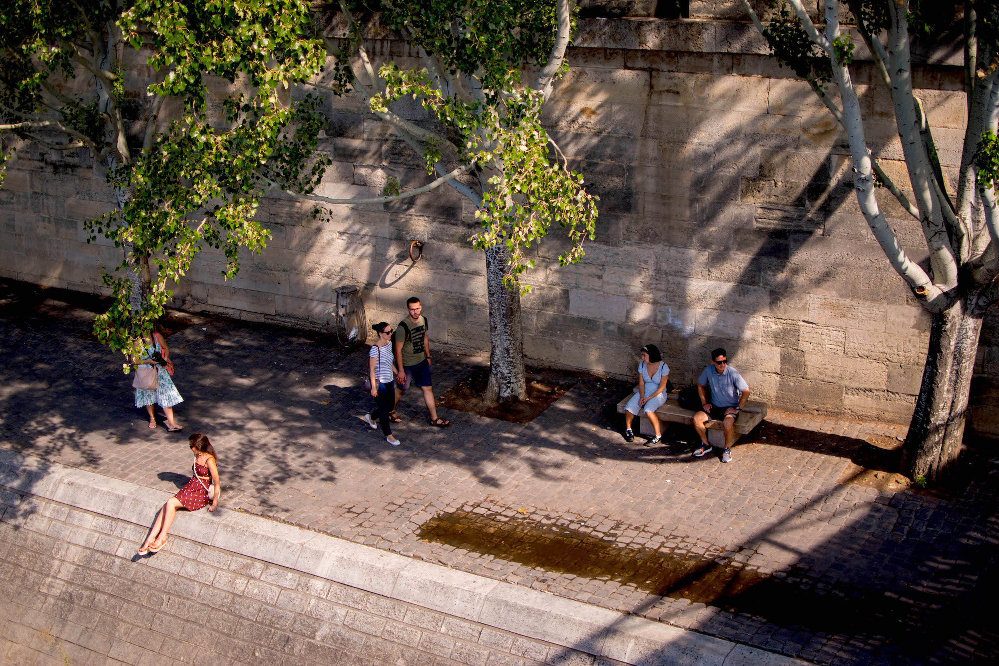 A handful of locals sitting on the banks of the River Seine in the shade of swaying trees in the summer.