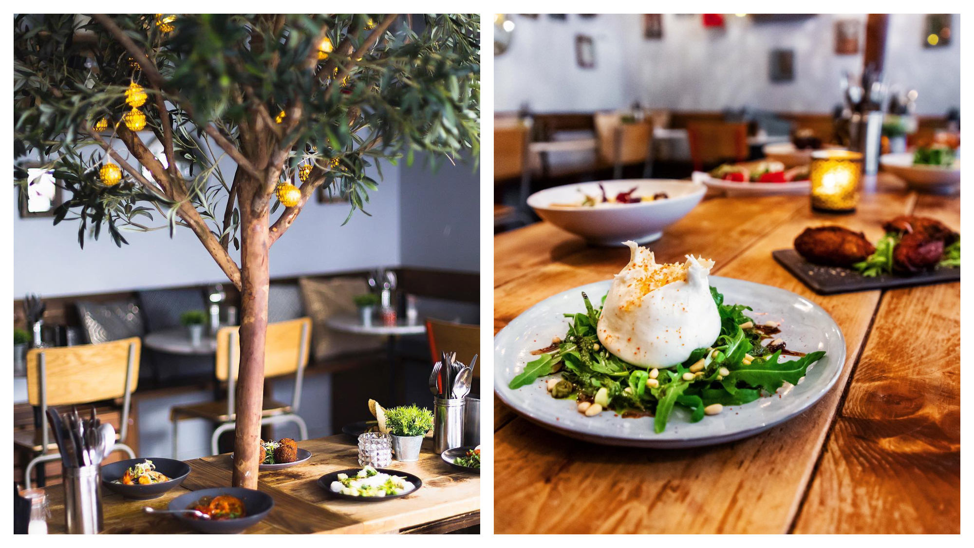 On left: The renowned olive tree at La Mangerie in Paris' Marais neighborhood invites diners to gather around for tapas. On right: A fresh green salad topped with pine nuts sits on the earthy, wooden farm table at La Mangerie in Paris' Marais neighborhood.