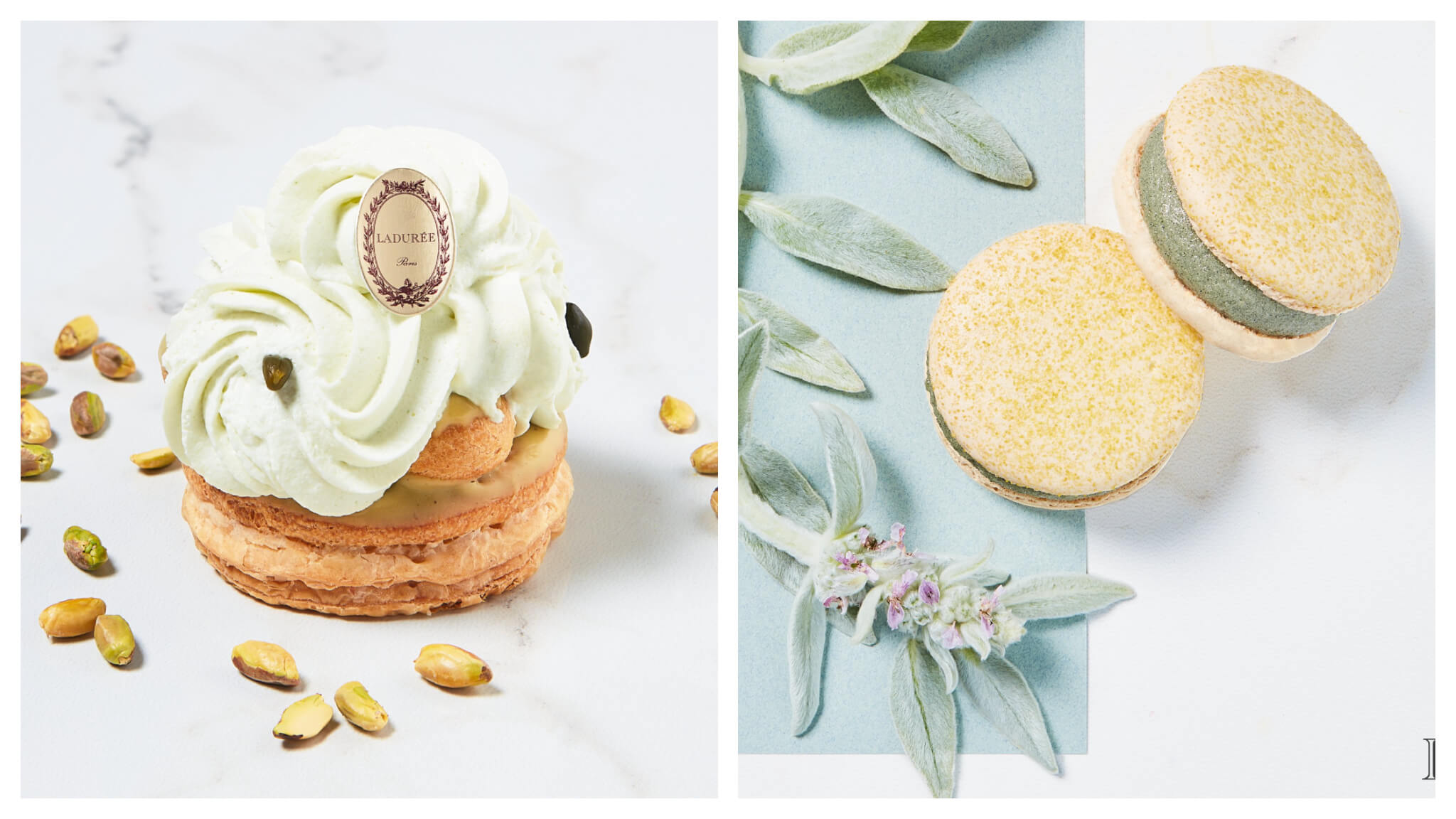 A pistachio pastry and green apple spirulina mint iced macarons from Ladurée