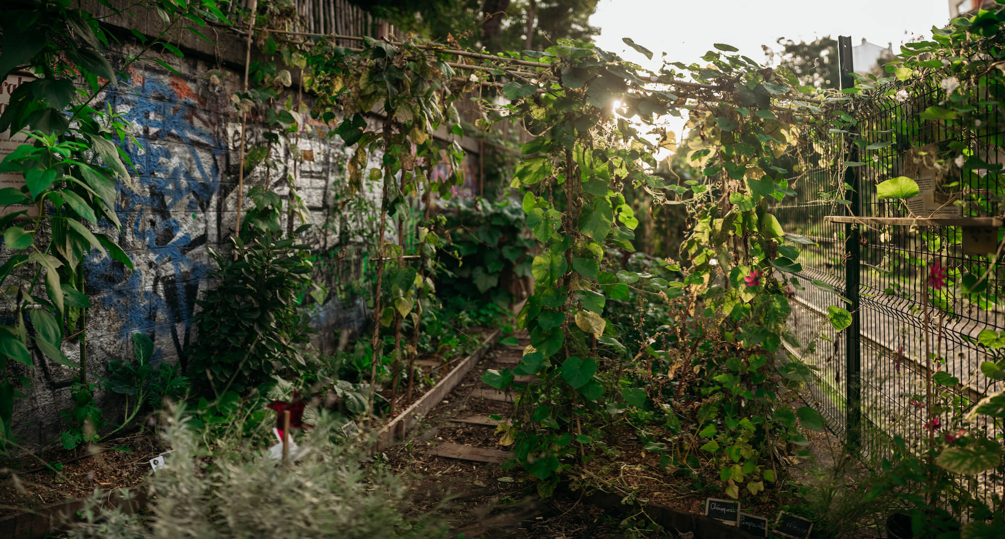 At La REcyclerie, a community space and restaurant in northern Paris, a garden grows along the old Petite Ceinture railway tracks.