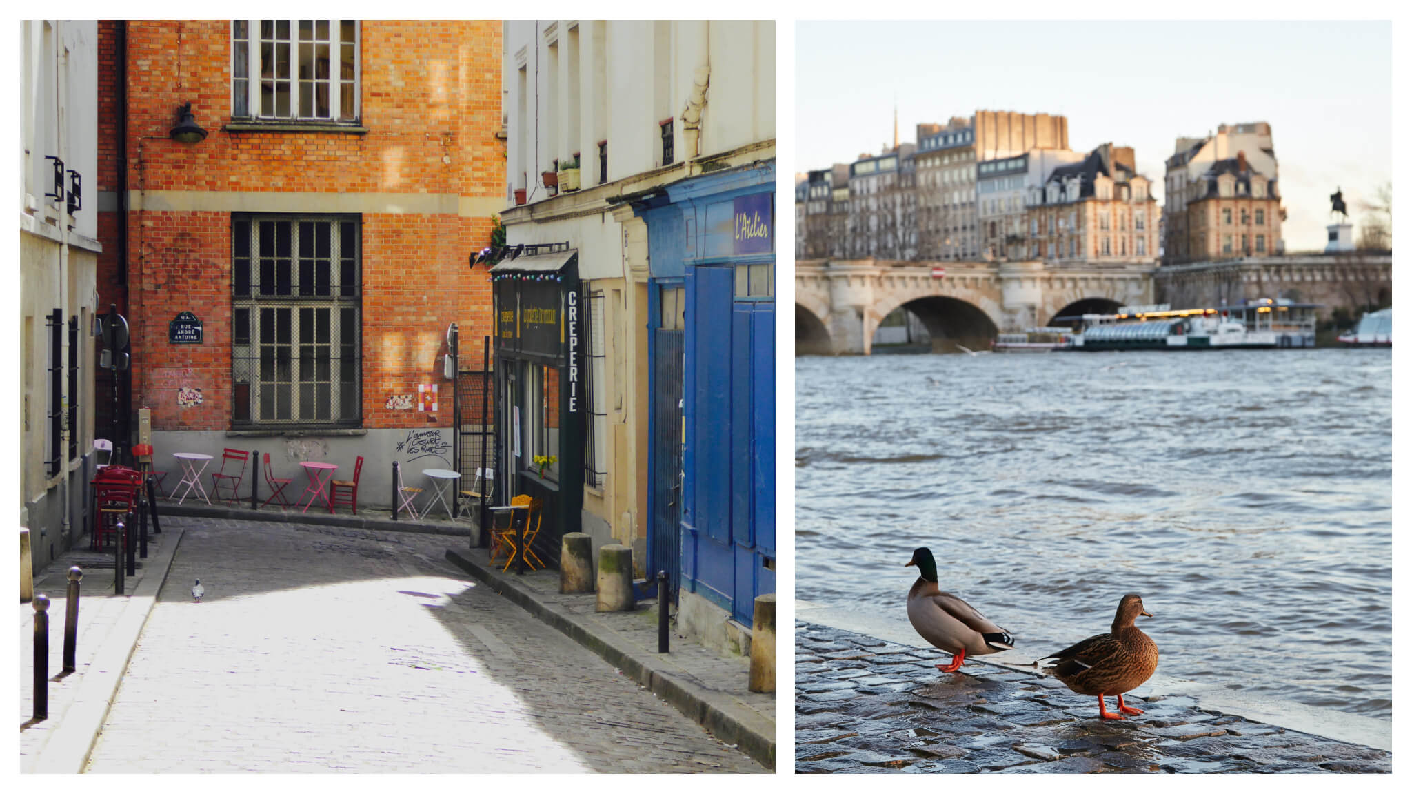 Left: a Parisian cobblestone street with a blue facade of an atelier and a green facade of a creperie on the right. At the end of the street, along the pathway are small tables and chairs outside the creperie. Right: two ducks on the wet cobblestone bank of the Seine river in Paris. In the distance is a bridge and Île de la Cité.