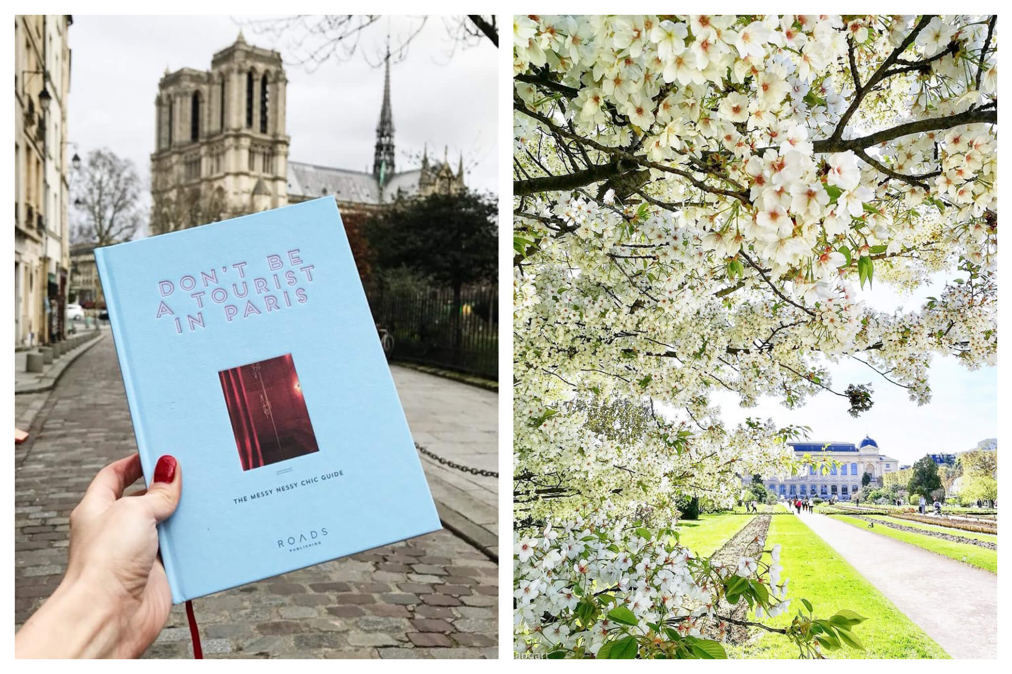 """Left: Vanessa Grall, aka Messy Nessy, holds a copy of her book """"Don't Be a Tourist in Paris"""" book in front of the Notre-Dame, Right: Bright white flowers flowers bloom on a sunny day in the Jardin de Plantes in Paris"""