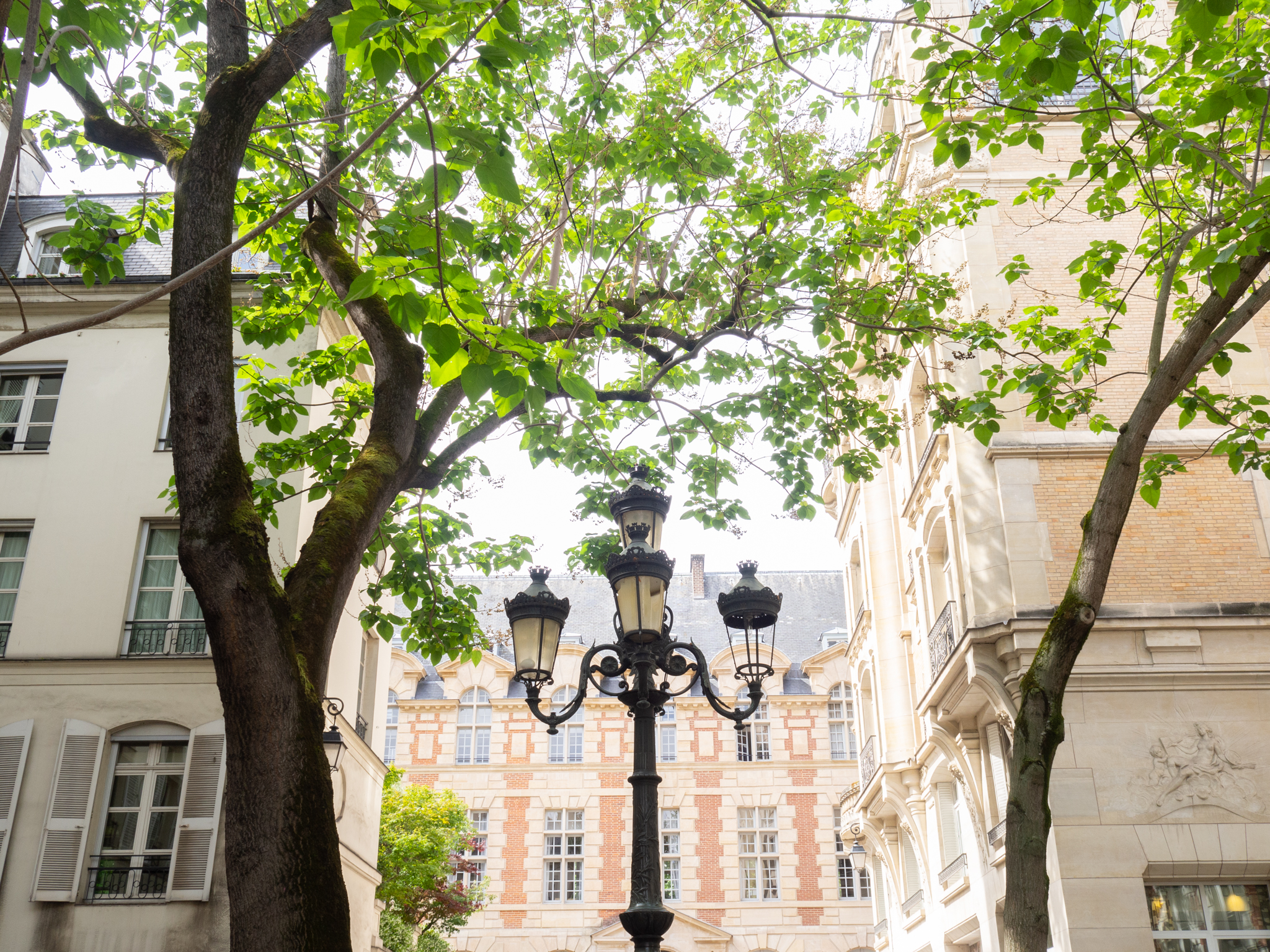 The sun shines through green leaves on trees in Square Trousseau on a spring day in Paris.