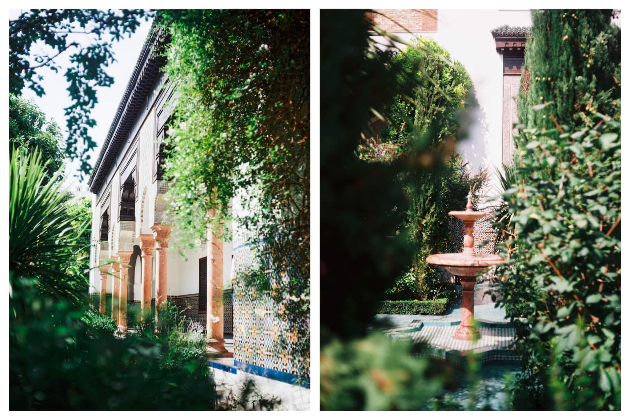 The beautiful Grande Mosquée de Paris, white and tiled, shines between plants on a sunny afternoon in Paris.