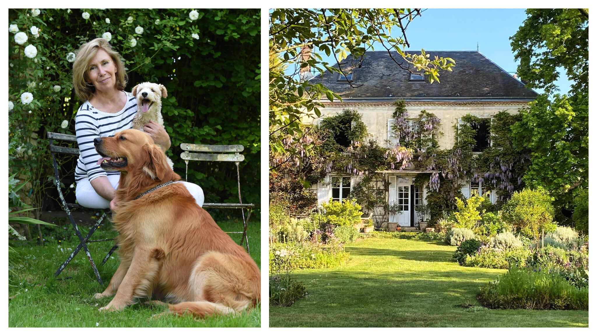 Left, Sharon Santoni and her two dogs out in the garden. Right: a magical Normandy home draped in flowers and plants.