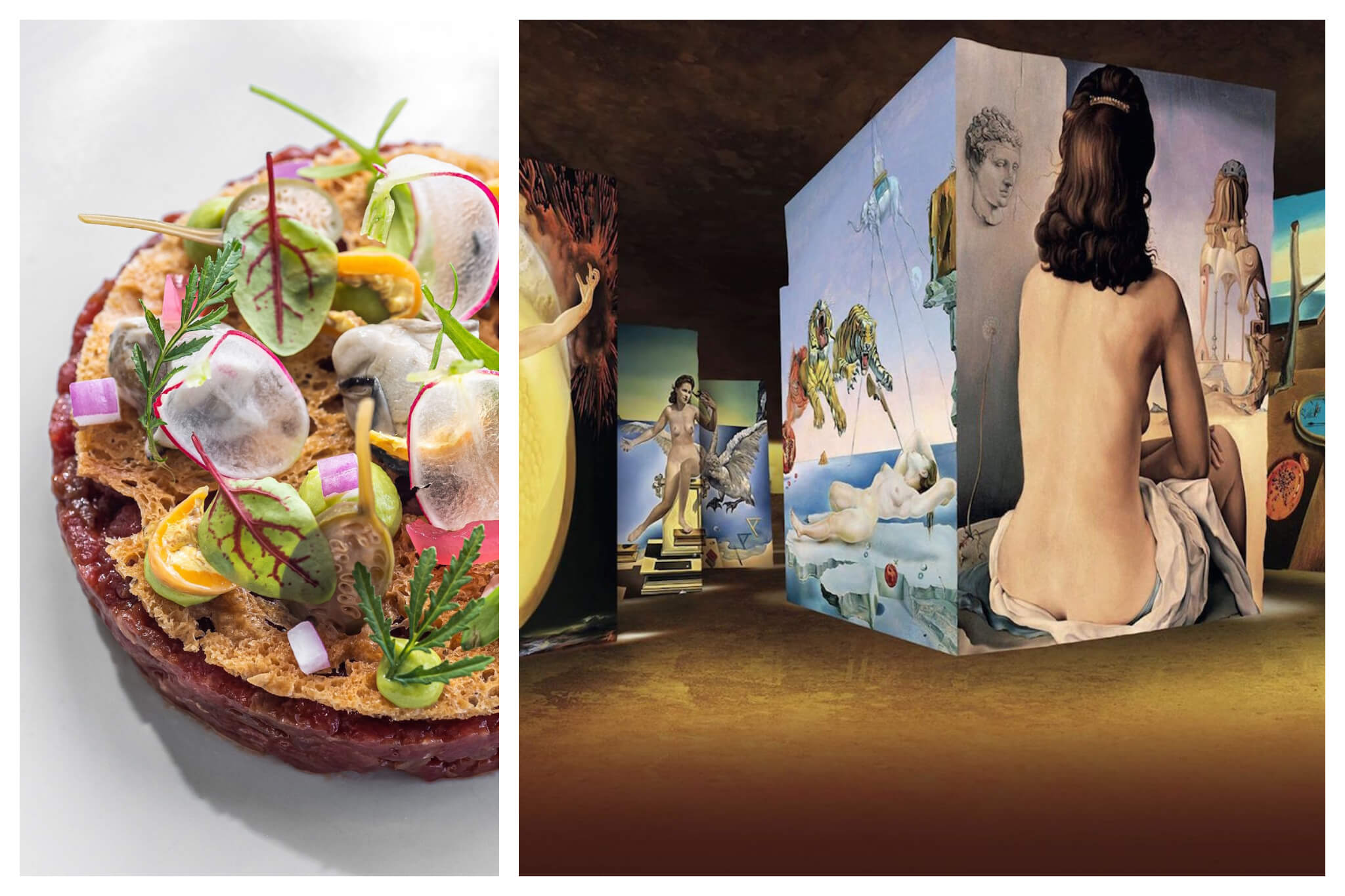 Left: A beautifully plated dish at the Micheling-starred L'Oustau de Baumanière, Right: Art is projected onto the walls of the Cerrières de Lumières art space in Arles.