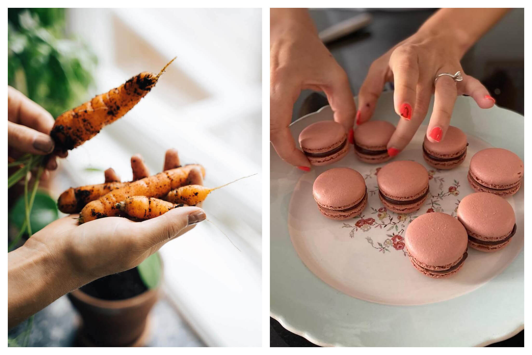 Left: A person holds four freshly harvested carrots, with dirt still visible on each of them, Right: A person delicately plates a batch of freshly baked macarons, which have pink cookies and a chocolate filling.